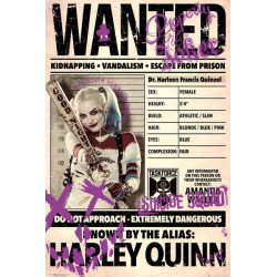 Poster - Suicide Squad - Harley Wanted - 61 x 91 cm - GB eye