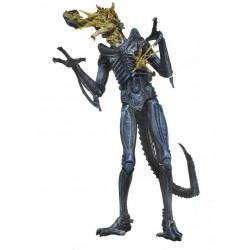Figurine - Aliens - serie 12 - Xenomorph Warrior Battle Damaged (Blue) - 18 cm - NECA