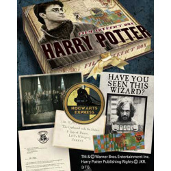 Réplique - Harry Potter - Boite d'artefacts Harry Potter - Noble Collection