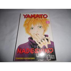 Manga - Yamato Nadeshiko - No 2 - Hayakawa Tomoko - Pika