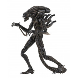Figurine - Aliens - Ultimate Alien Warrior Brown - NECA