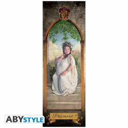 Poster de porte - Harry Potter - Grosse Dame - 53 x 158 cm - ABYstyle
