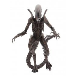 Figurine - Aliens - serie 14 - Warrior Alien - 18 cm - NECA