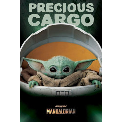 Poster - Star Wars - The Mandalorian - Precious Cargo - 61 x 91 cm - Pyramid International