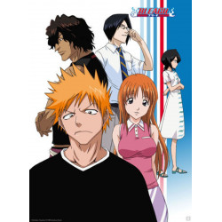 Poster - Bleach - Ichigo and Friends- 52 x 38 cm - ABYstyle