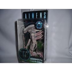 Figurine - Aliens - Alien - serie 9 - Xenomorph Albino Drone - 18 cm - NECA